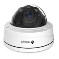 2MP Remote Focus & Zoom Pro Dome Camera 3-10.5mm P-Iris FPB SpOrd